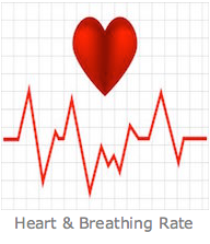 Heart and Breathing rate
